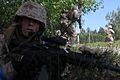 Saber Strike 2012 120618-M-MS727-003.jpg