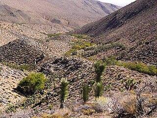 Sacatar Trail Wilderness
