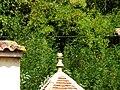Saint-Capraise-de-Lalinde bourg épi (7).JPG
