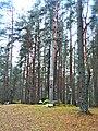 Salako sen., Lithuania - panoramio (3).jpg