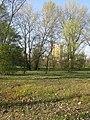 San Donà - Parco Fluviale 3.jpg