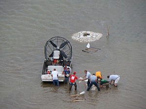 Sand boil - Attempts to plug a sand boil with sandbags during the 2011 Missouri River floods.  Many of the attempts were unsuccessful.