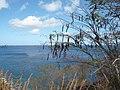 Sankt Lucia - panoramio - georama (11).jpg