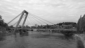 A4 motorway (Switzerland) - A4 motorway bridge over the Rhine at Schaffhausen.