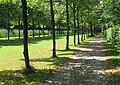 Schlosspark Schleissheim Allee-1.jpg