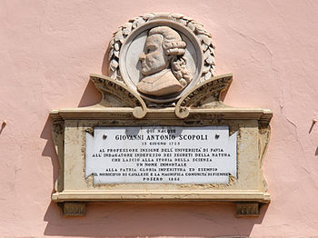Scopoli plaque Cavalese