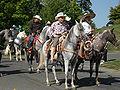 Seattle - Fiestas Patrias Parade 2008 - horses 12.jpg