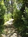 Serra da Boa Viagem 2 - panoramio.jpg