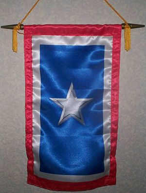 The Silver Star Families of America - Actual Silver Star Service Banner