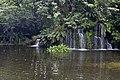 Singapore Bird Park-19and (2927537719).jpg