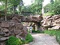 Singapore Botanic Gardens, Evolution Garden 15, Sep 06.JPG