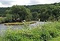 Small island in the Wye... - geograph.org.uk - 523367.jpg