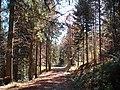 Sommerlicher Herbst Herrenstuhl - panoramio (23).jpg