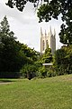 St Edmundsbury Cathedral tower - geograph.org.uk - 1425740.jpg