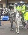 Stamford Bridge Security (5986807435).jpg