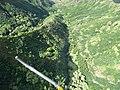 Starr-151005-0189-Aleurites moluccana-aerial view-West Maui-Maui (26190360992).jpg