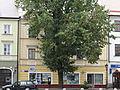 Stary Rynek 12 w Łowiczu.JPG