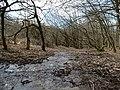 Steam near the Aubach stream.jpg