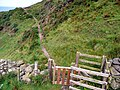 Steep ascent on the Southern Upland Way - geograph.org.uk - 916763.jpg