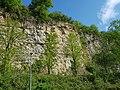Steinbruch an der Ludwigsburger Straße, Marbach am Neckar, 2020-04-18, yj.jpg