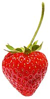 Strawberry444.jpg
