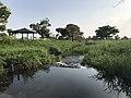 Stream in Yoshinogari Historical Park 4.jpg