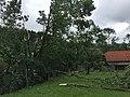 Sturm ff lichtenberg0004 (36627560616).jpg