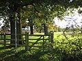 Sunlit footpath - geograph.org.uk - 1023190.jpg