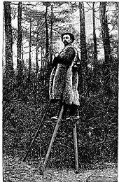 Stilts - Wikipedia