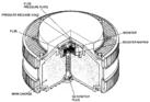 TC24 Italian landmine cutaway