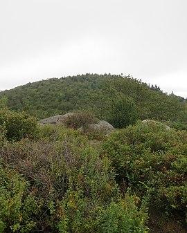 TRue Summit Gap Mountain.JPG