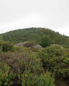TRue Summit Gap Mountain.JPG