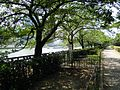 Tenma - panoramio (14).jpg
