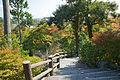 Tenryuji Kyoto10n4592.jpg