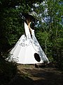 Tepee in Bicton Wood - geograph.org.uk - 254586.jpg