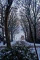Texel - Rozendijk - Winterview SSE into Smitsweg.jpg