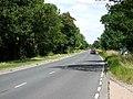 The B1230 Crossing Balkholme Common - geograph.org.uk - 202070.jpg