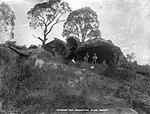 The Bonnet Rock, Waranora River (4903249275).jpg