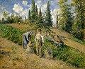 The Harvest, Pontoise.jpg