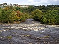The River Swale at Richmond - geograph.org.uk - 71937.jpg