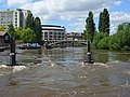 The River Thames, Reading - geograph.org.uk - 508617.jpg