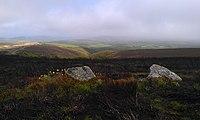 The Whit Stones of Porlock Common.jpg