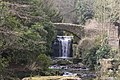 The waterfall in Jesmond Dene - geograph.org.uk - 1163153.jpg