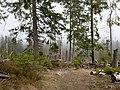 Trail near Sonnenkappe 14.jpg