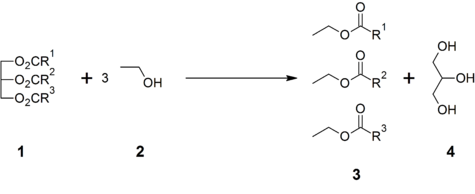 Transesterification of triglycerides with ethanol.png