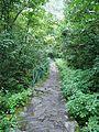 Treak route of the Valley of Flower.jpg