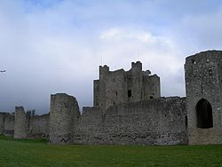 Trim Castle featuring the keep, curtain wall and barbican