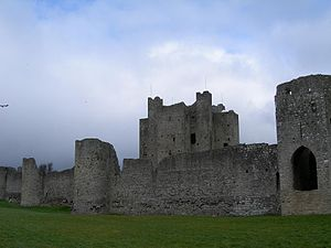 Trim, County Meath - Trim Castle featuring the keep, curtain wall and barbican