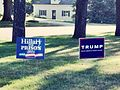 Trump and Hillary for Prison signs.jpg