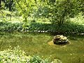 Už bez rýb-) - panoramio.jpg